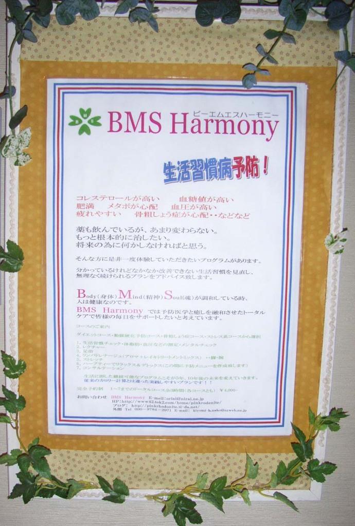 BMS Harmony メイン画像