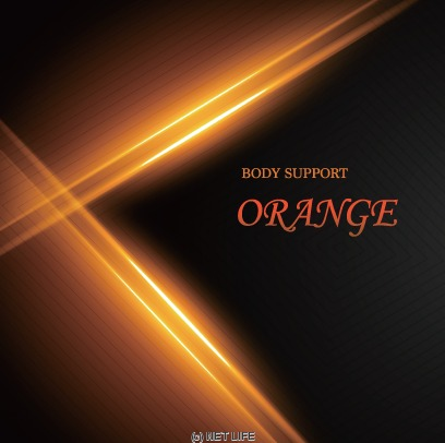 Body Support ORANGE メイン画像