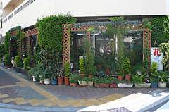 花の店サフラン