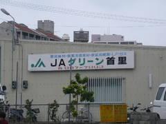 JAグリーン首里