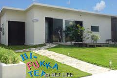 HI-FUKKA TEA